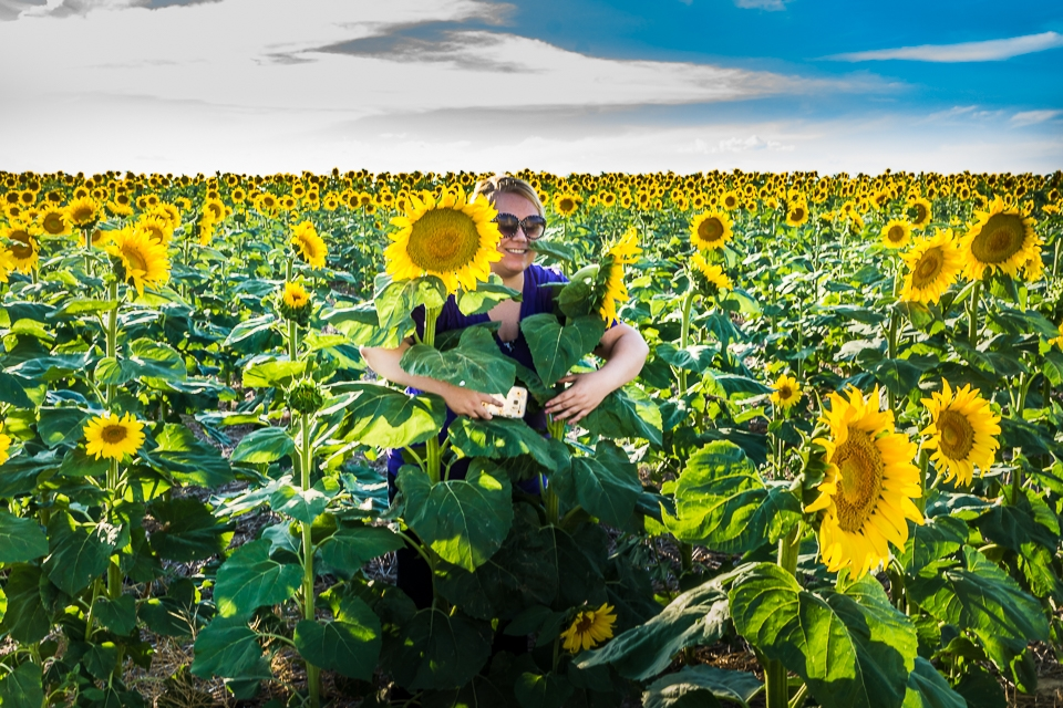 Katy-Sunflowers-8668