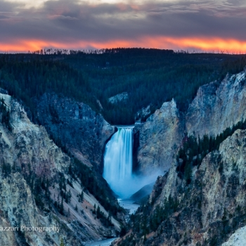 Grand-Canyon-of-Yellowstone-08234